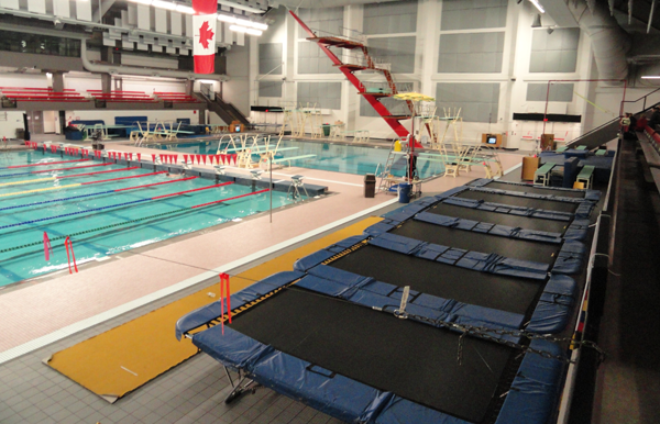 Edmonton Springboard And Platform Diving Club Learn To Dive Programs
